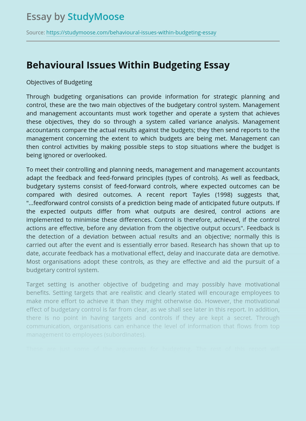 Behavioural Issues Within Business Budgeting