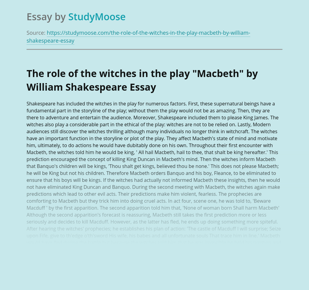 "The role of the witches in the play ""Macbeth"" by William Shakespeare"