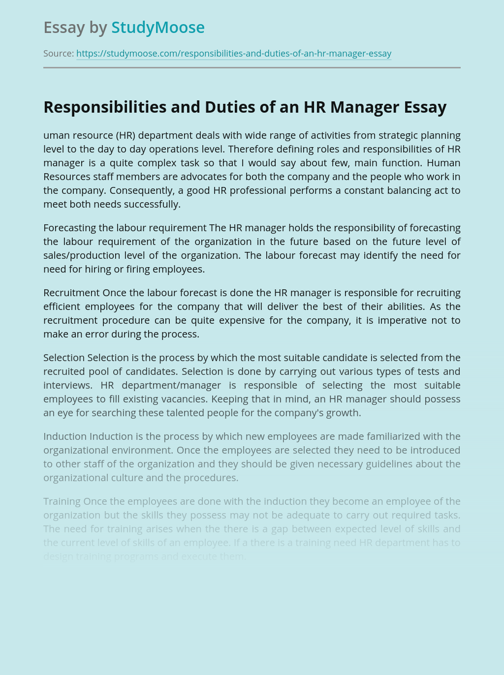 Responsibilities and Duties of an HR Manager