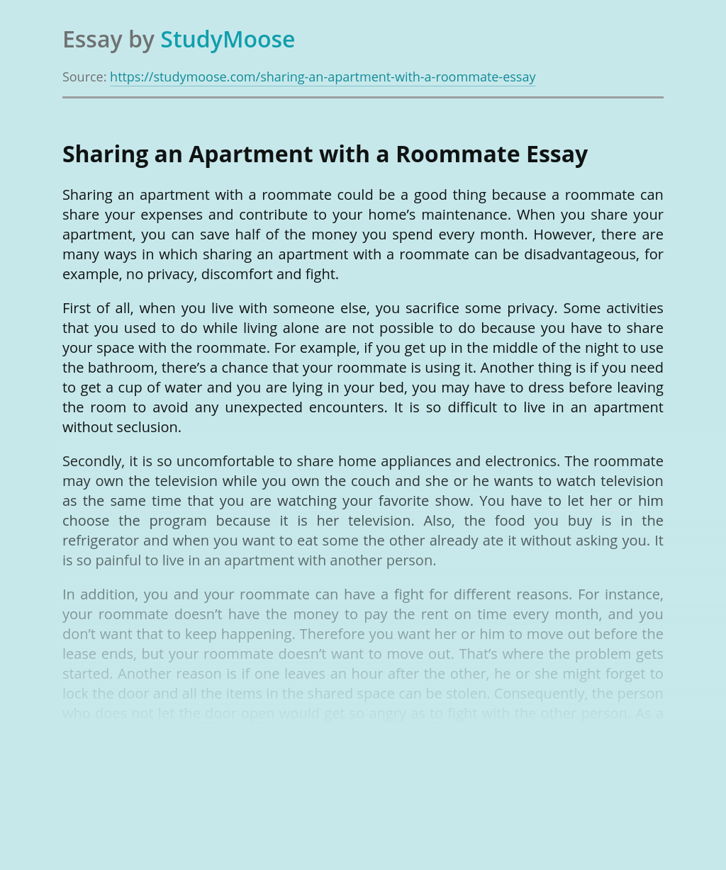Simple Living Sharing an Apartment vs Alone