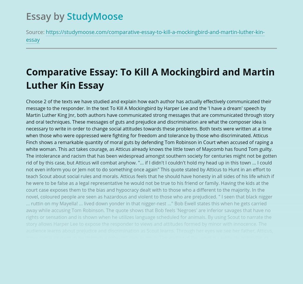Comparative Essay: To Kill A Mockingbird and Martin Luther Kin
