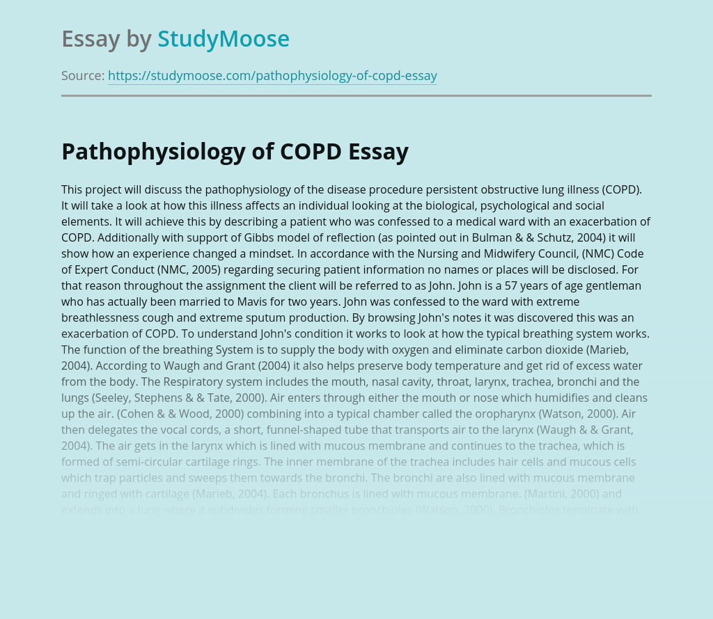Pathophysiology of COPD and Health Issues