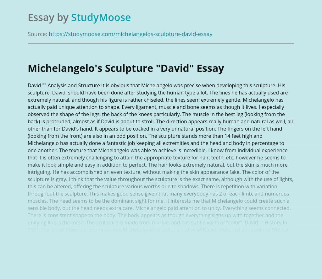 David by Michelangelo: Renaissance Statue