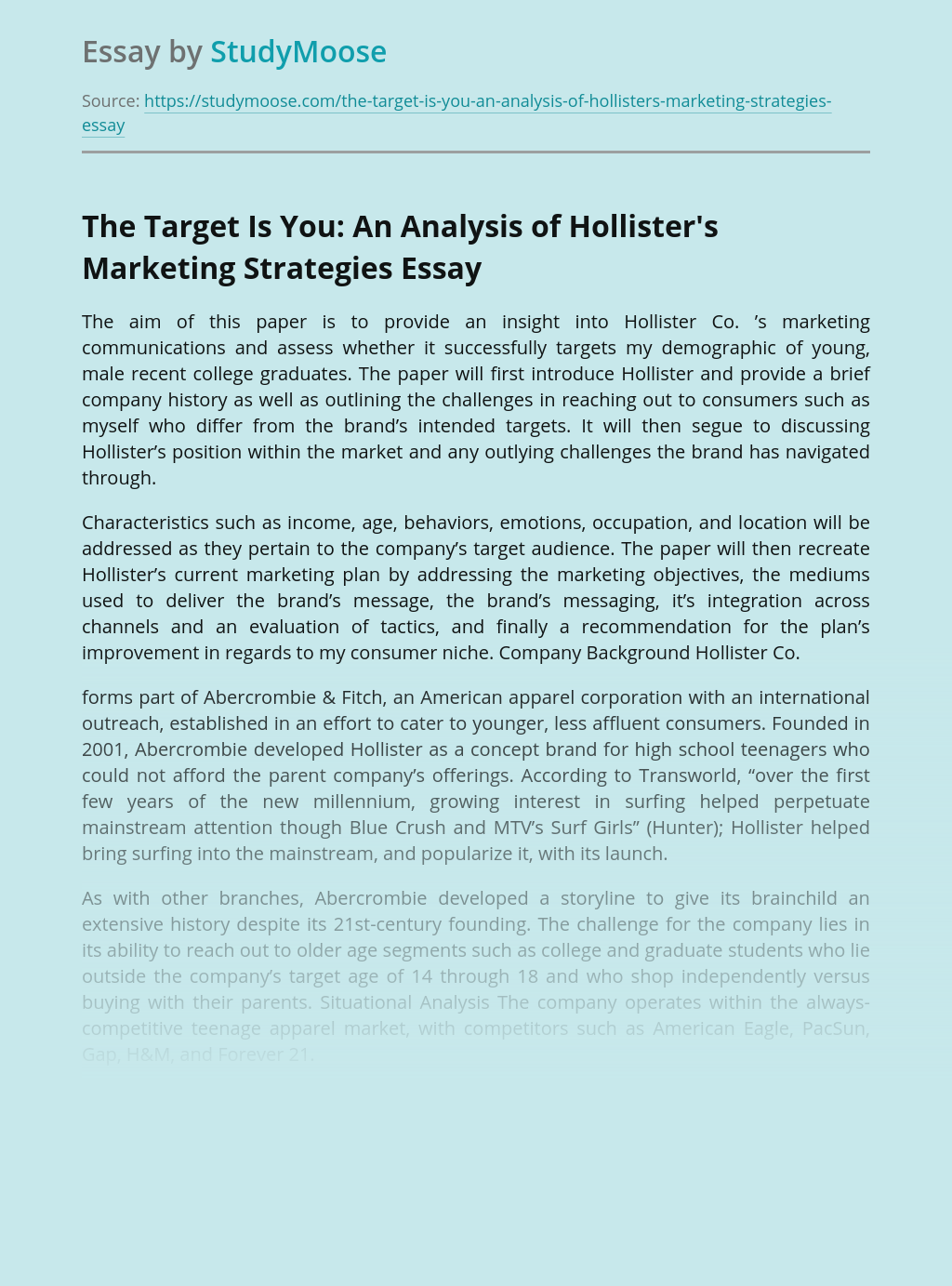 The Target Is You: An Analysis of Hollister's Marketing Strategies