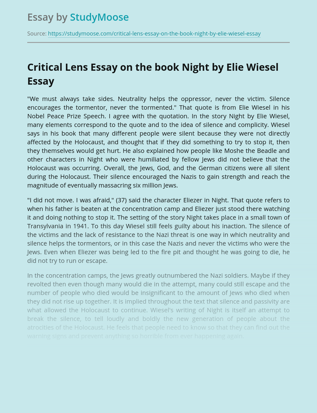 Critical Lens Essay on the book Night by Elie Wiesel