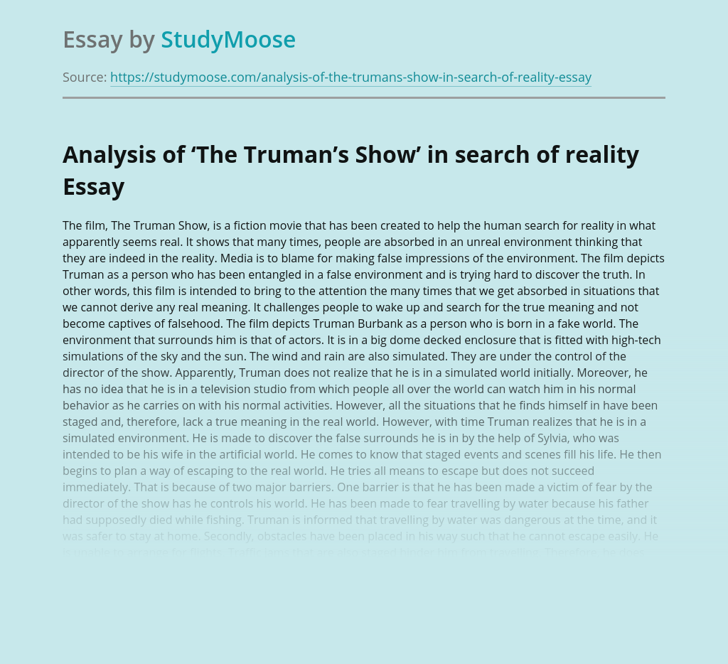 Analysis of 'The Truman's Show' in search of reality