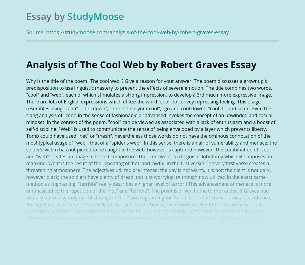 Language Analysis of A Poem The Cool Web