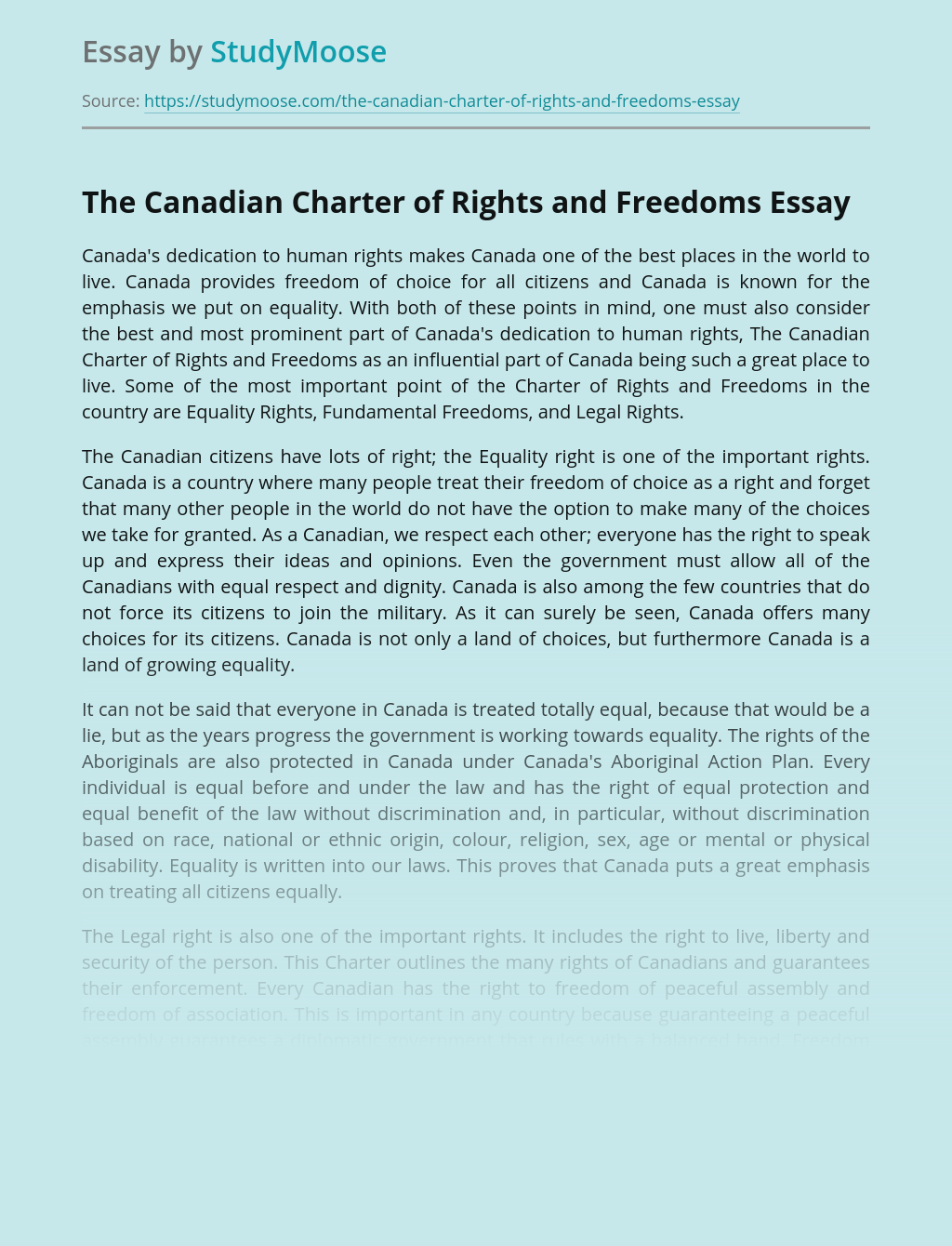 rights and freedoms essay