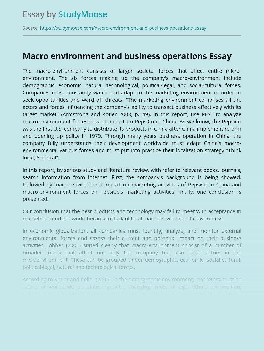 Macro environment and business operations