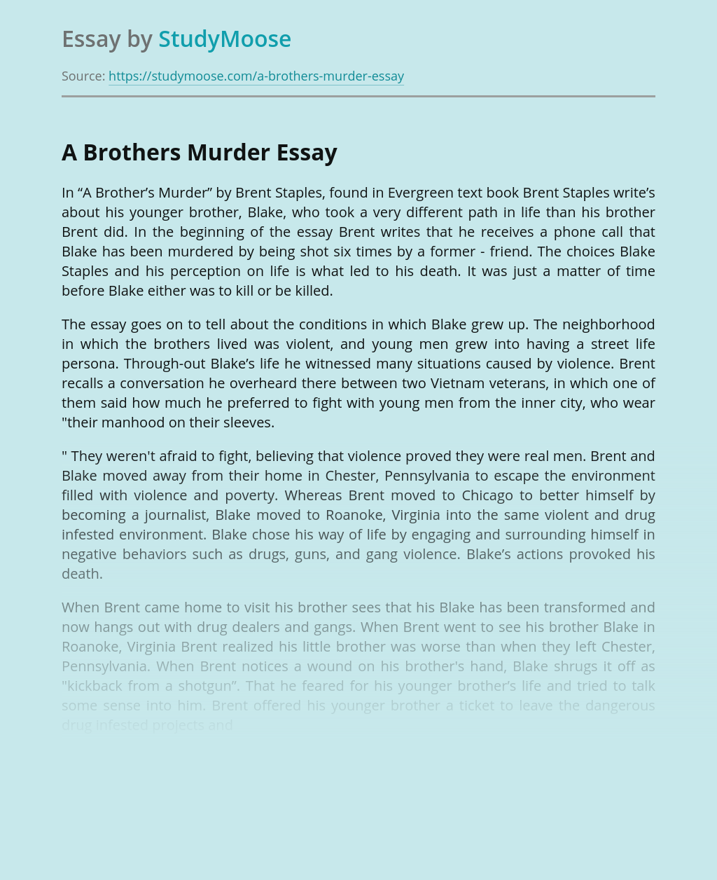 """Two Brother In """"A Brother's Murder"""" by Brent Staples"""