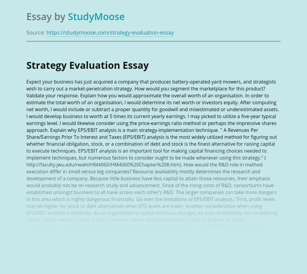 Strategy Evaluation and Business Management