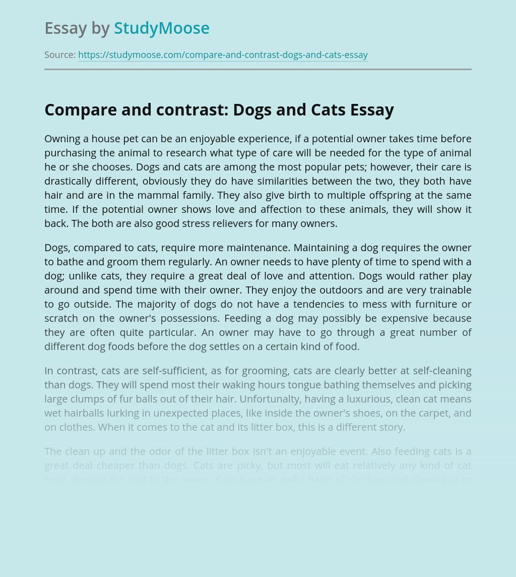 Compare and contrast: Dogs and Cats