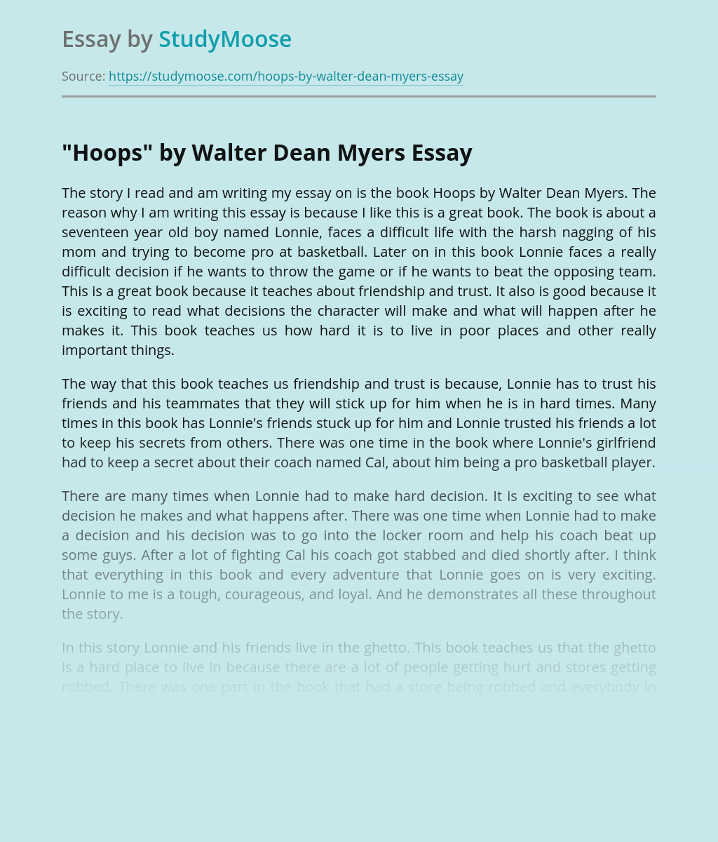 Book Review of Hoops by Walter Dean Myers