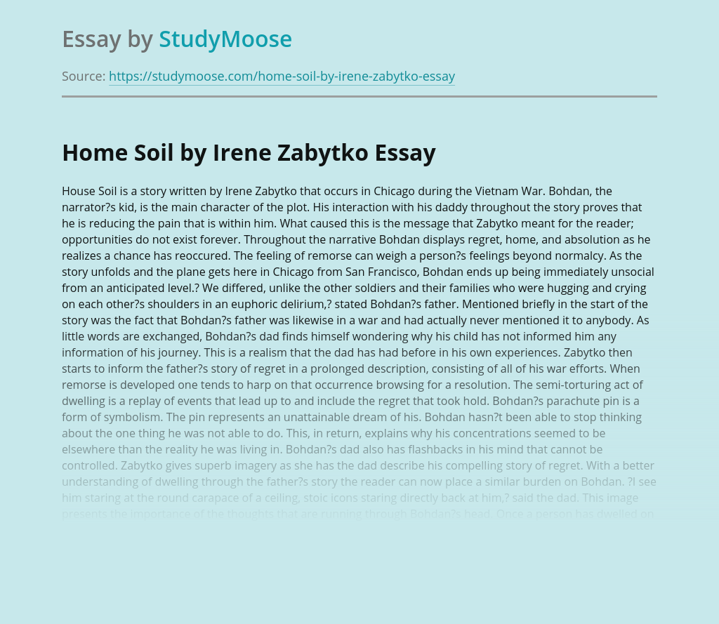 Book Review of Home Soil by Irene Zabytko