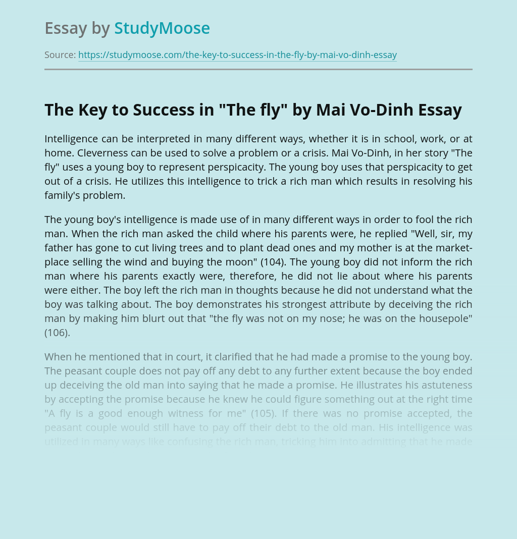 """The Key to Success in """"The fly"""" by Mai Vo-Dinh"""