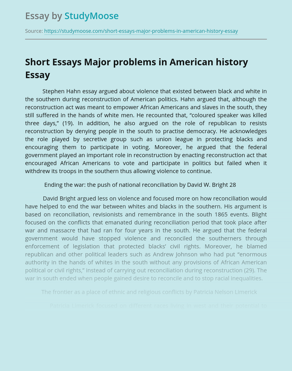Short Essays Major problems in American history
