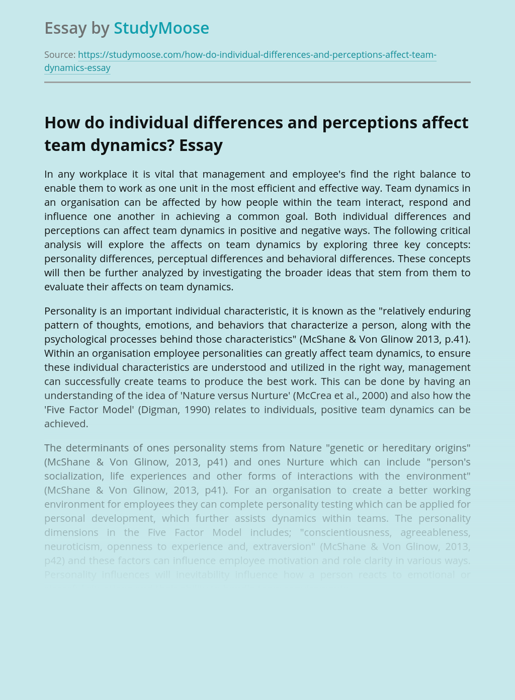 How do individual differences and perceptions affect team dynamics?