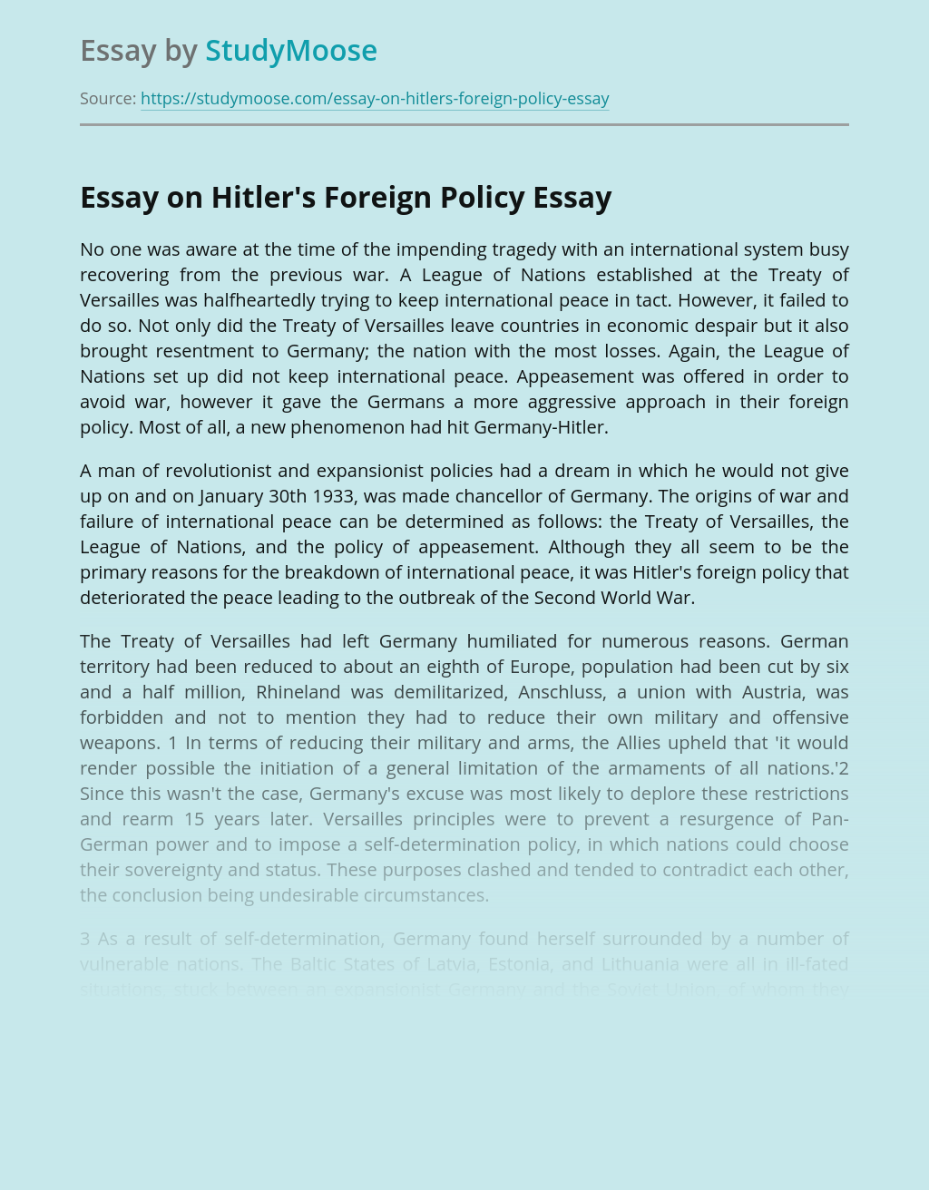 Essay on Hitler's Foreign Policy