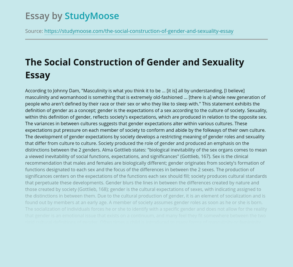 The Social Construction of Gender and Sexuality