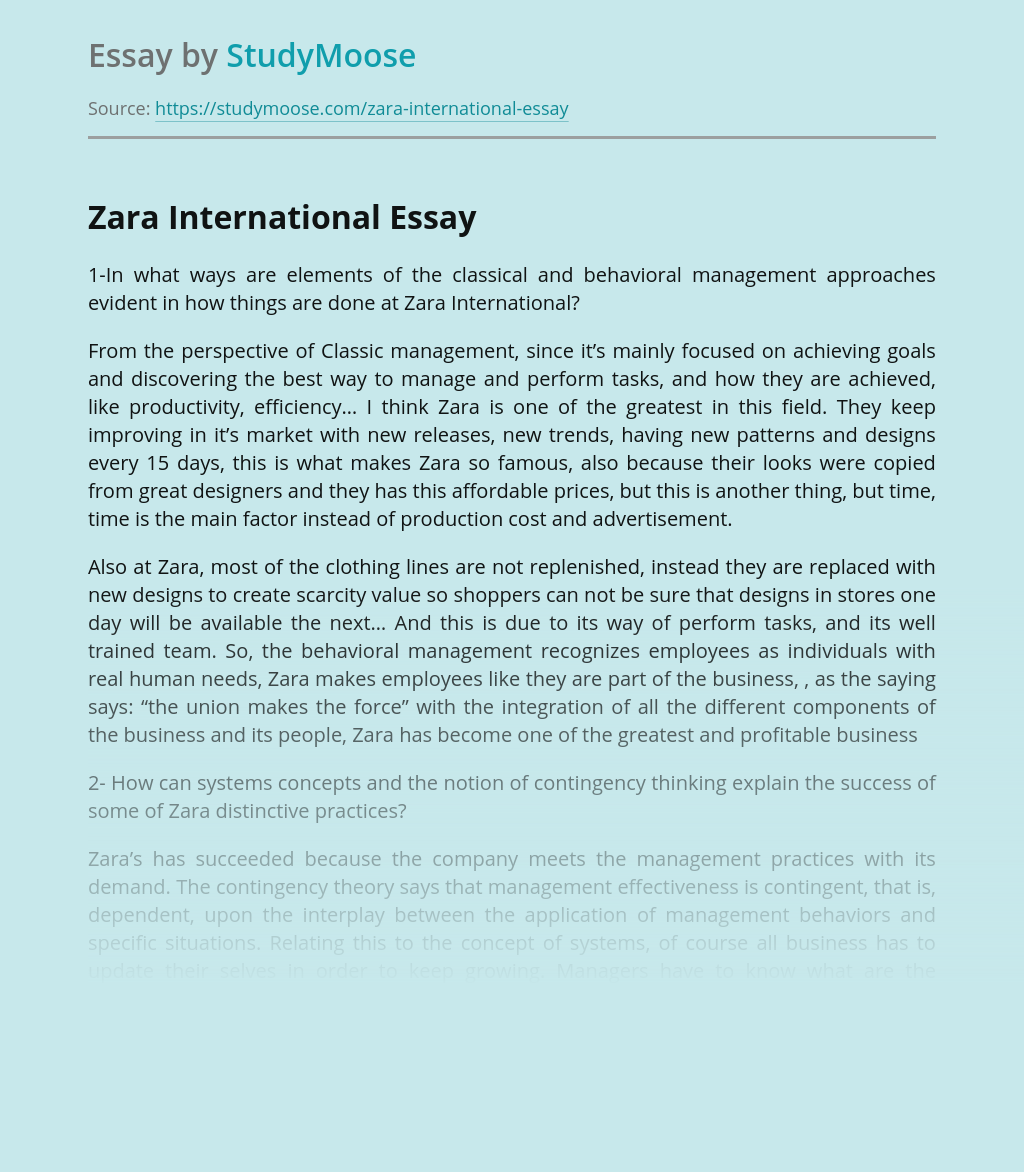Zara International Business Management