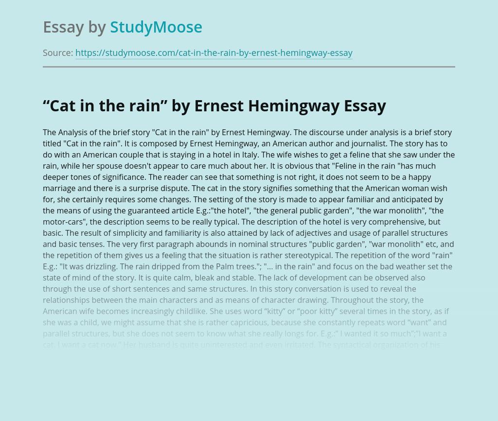 Humor essays amazon