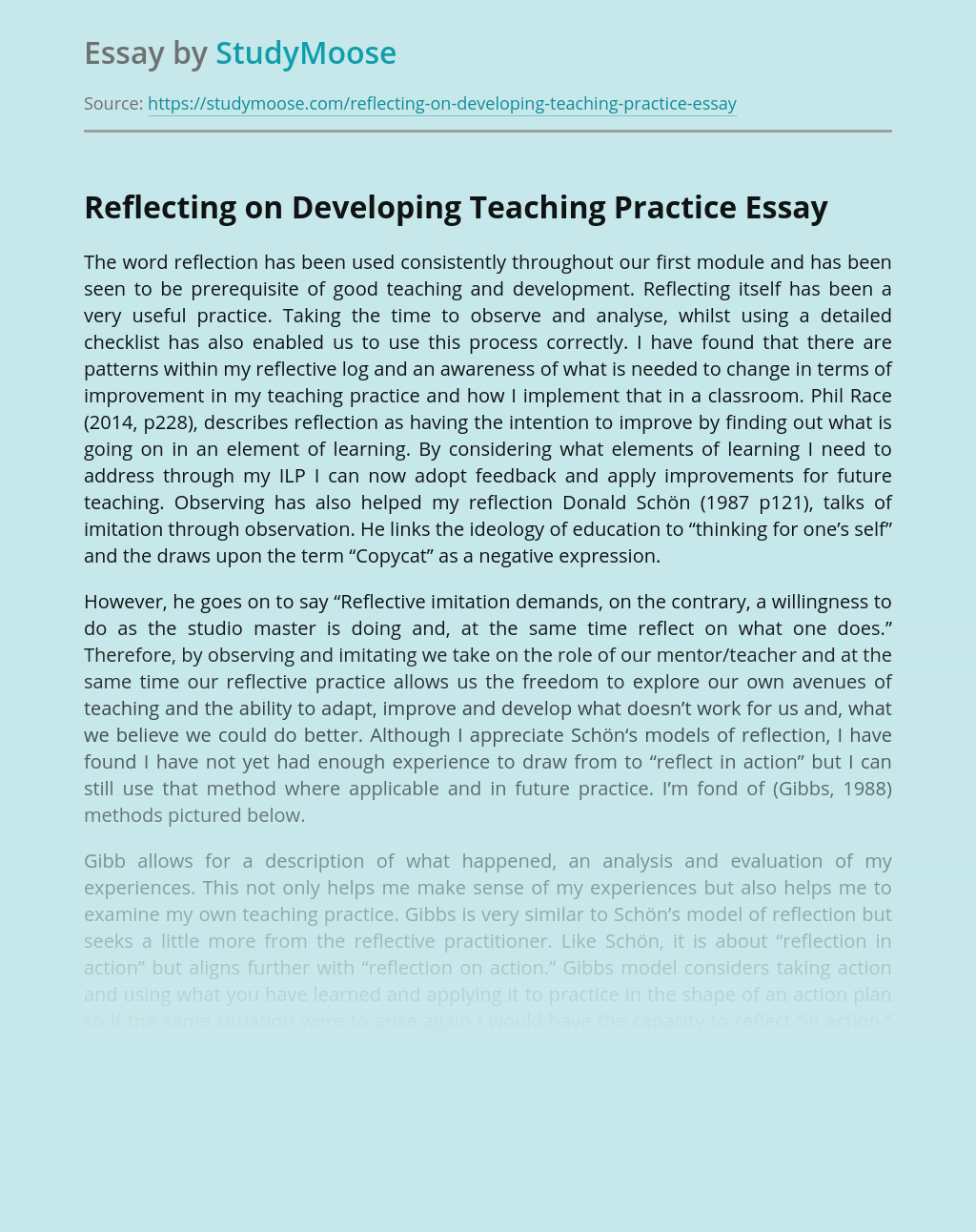 Reflecting on Developing Teaching Practice