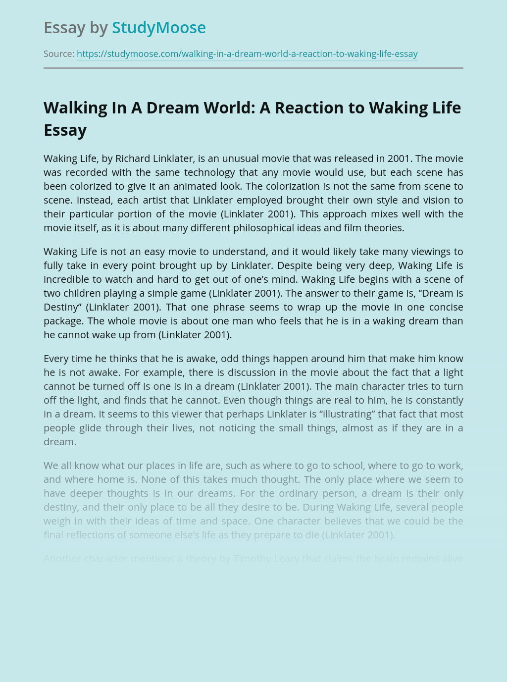 Walking In A Dream World: A Reaction to Waking Life