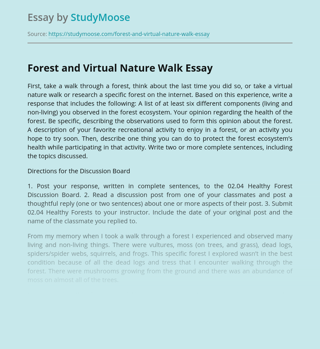 Forest and Virtual Nature Walk