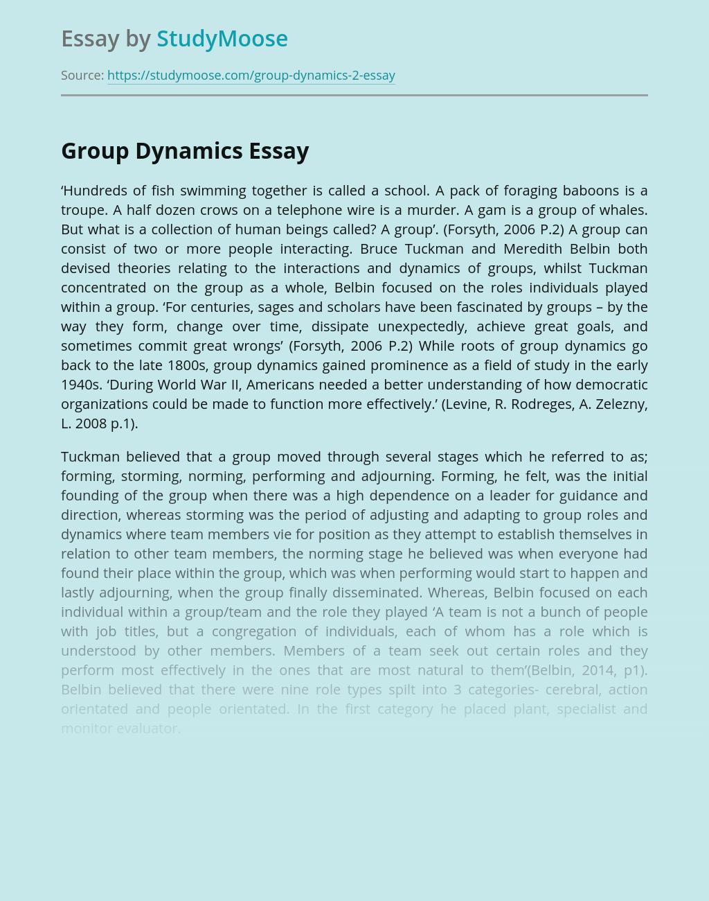 Tuckman's Teamwork Survey and Group Dynamics
