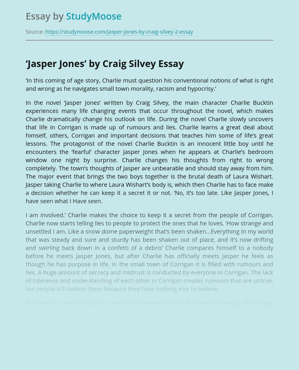 Novel Jasper Jones by Craig Silvey