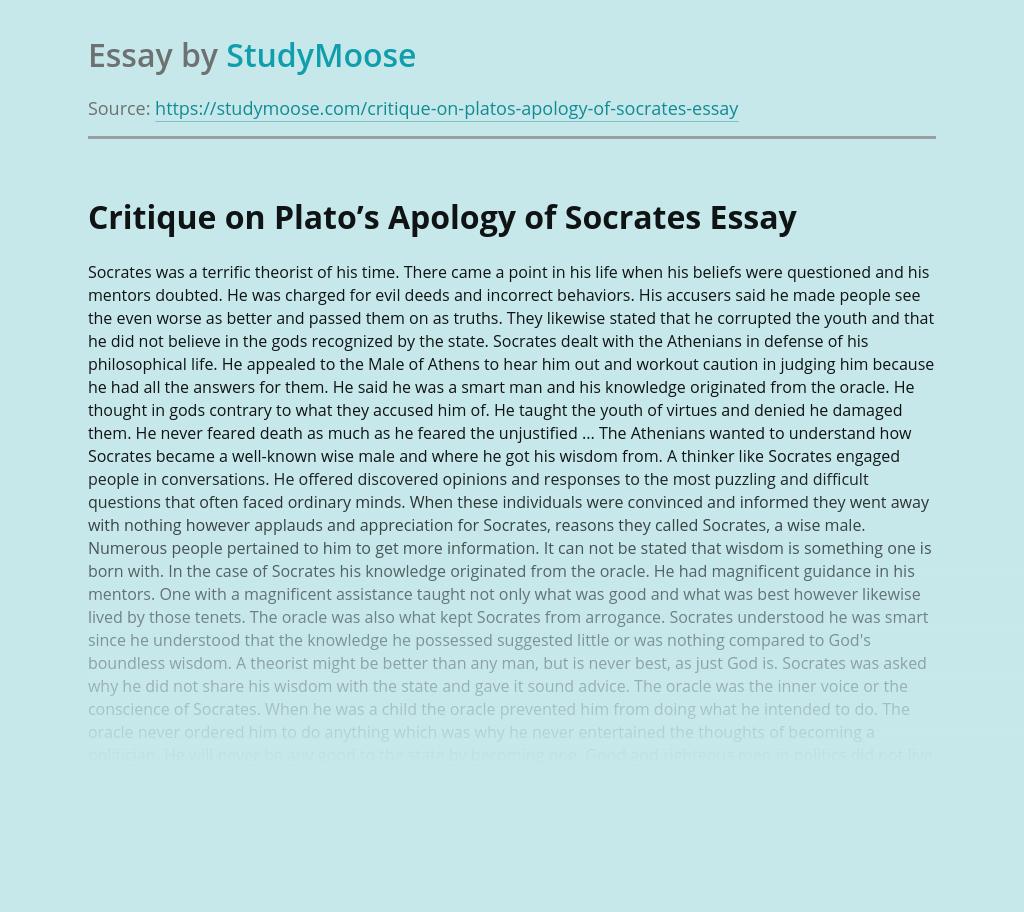 Common app activity essay