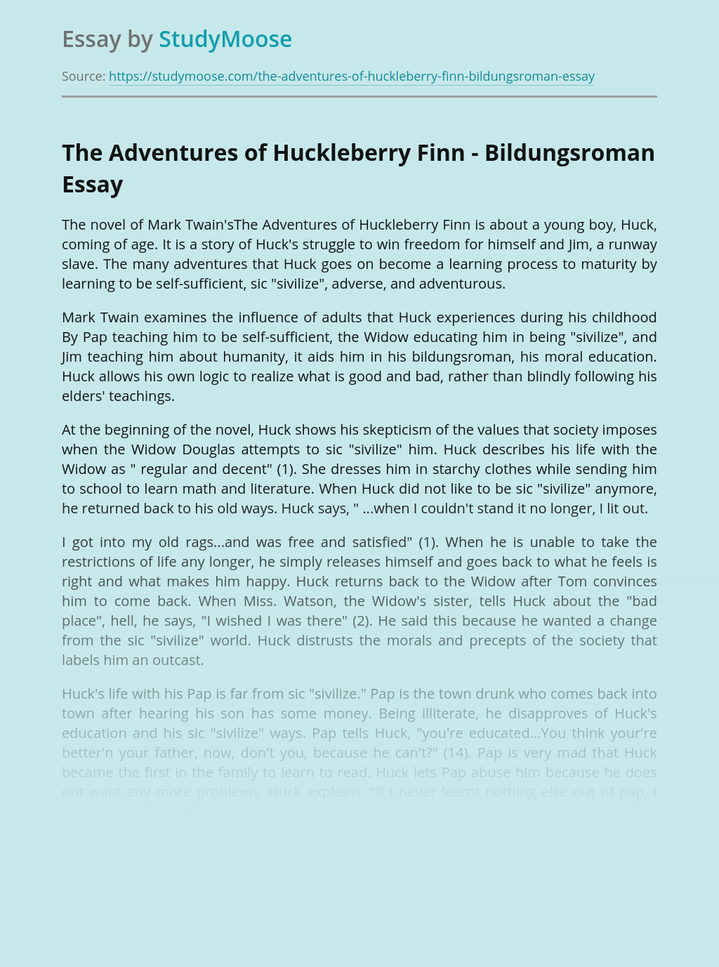 The Adventures of Huckleberry Finn - Bildungsroman