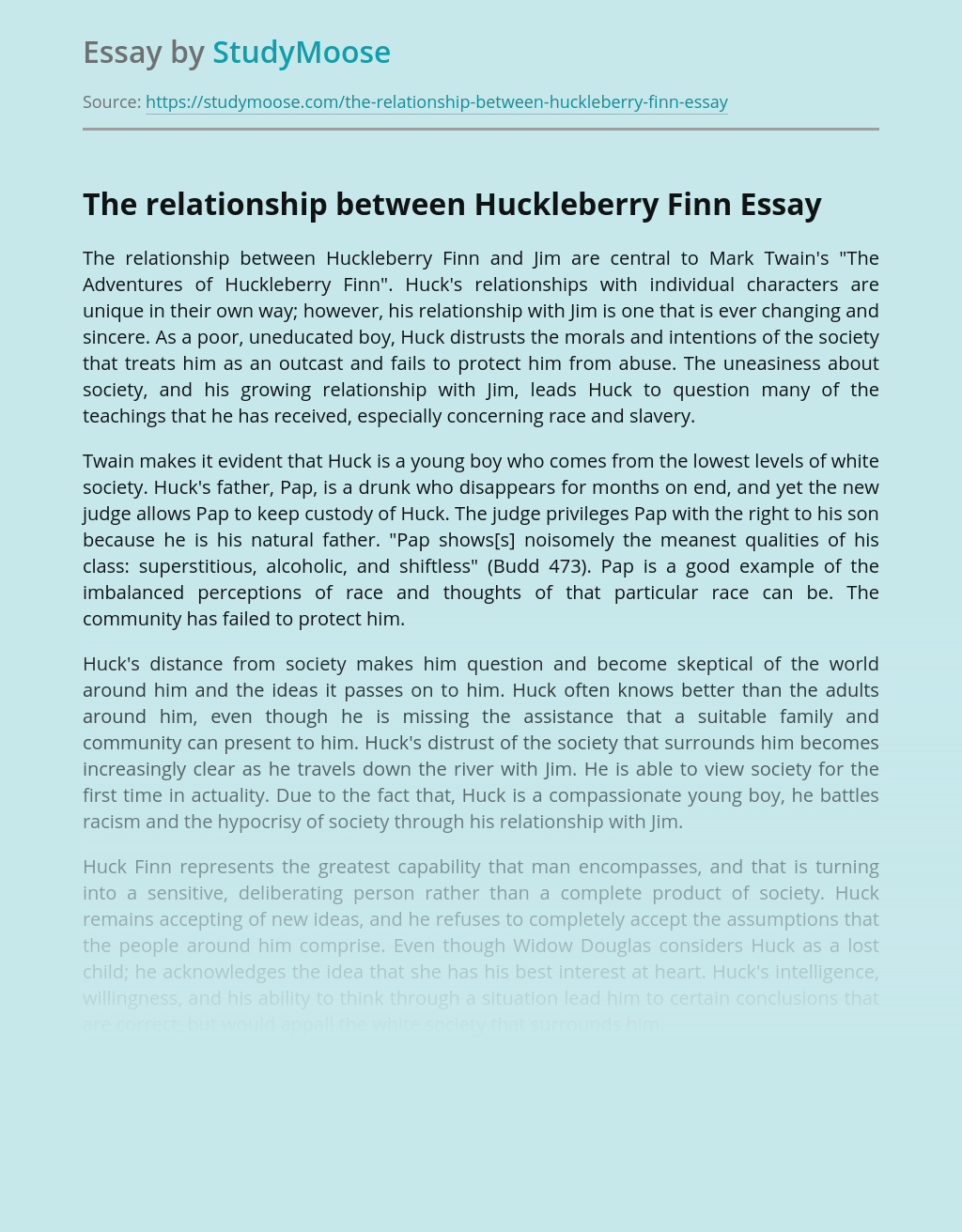 The relationship between Huckleberry Finn