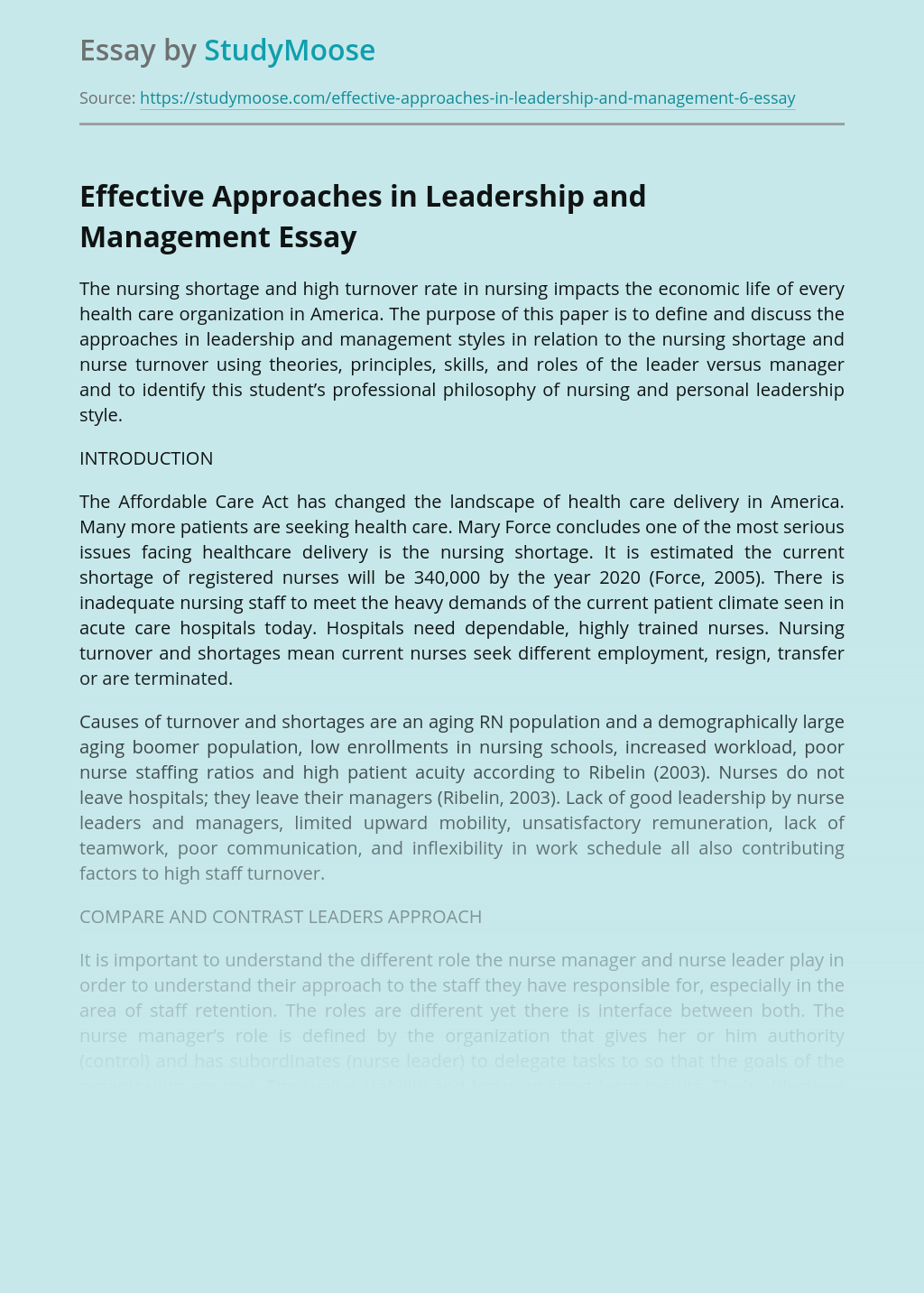 Effective Approaches in Leadership and Management: Nursing Turnover