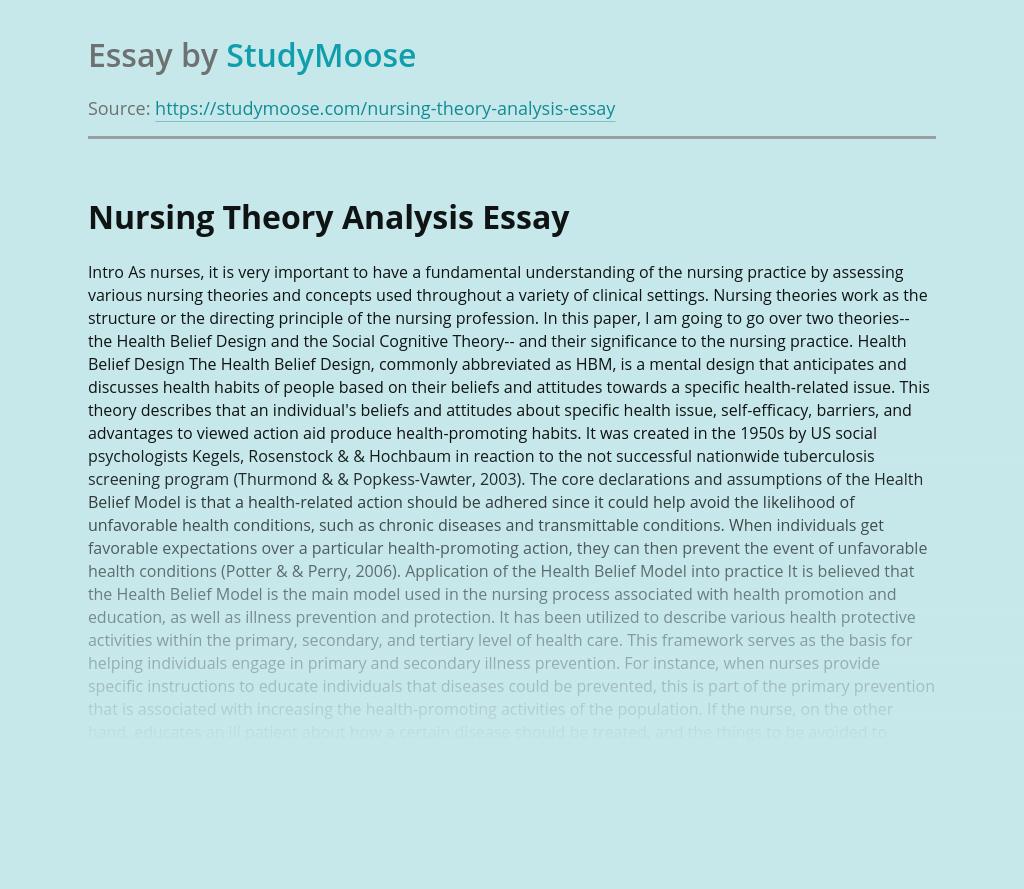 Nursing Theory Analysis