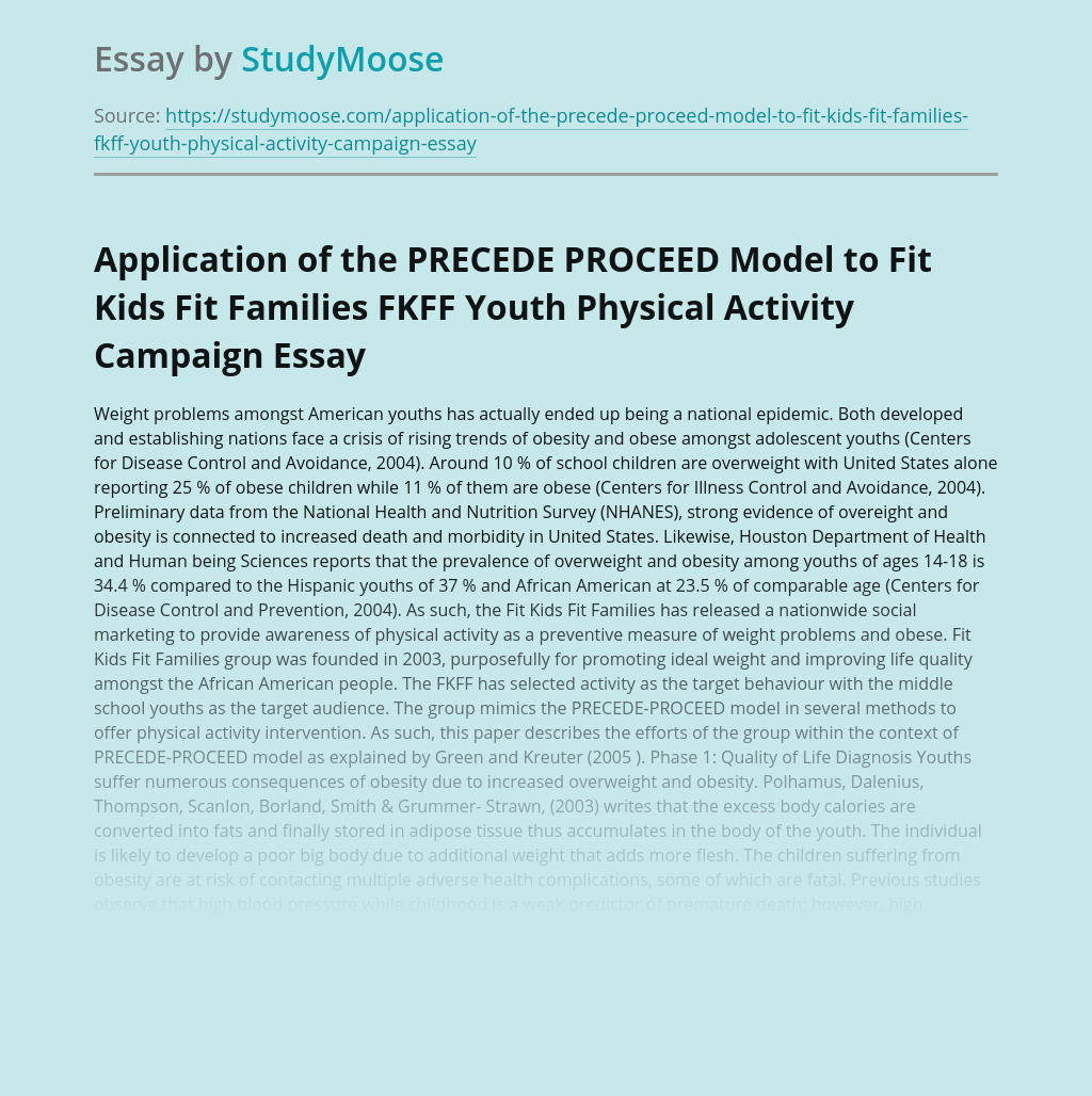 Application of the PRECEDE PROCEED Model to Fit Kids Fit Families FKFF Youth Physical Activity Campaign