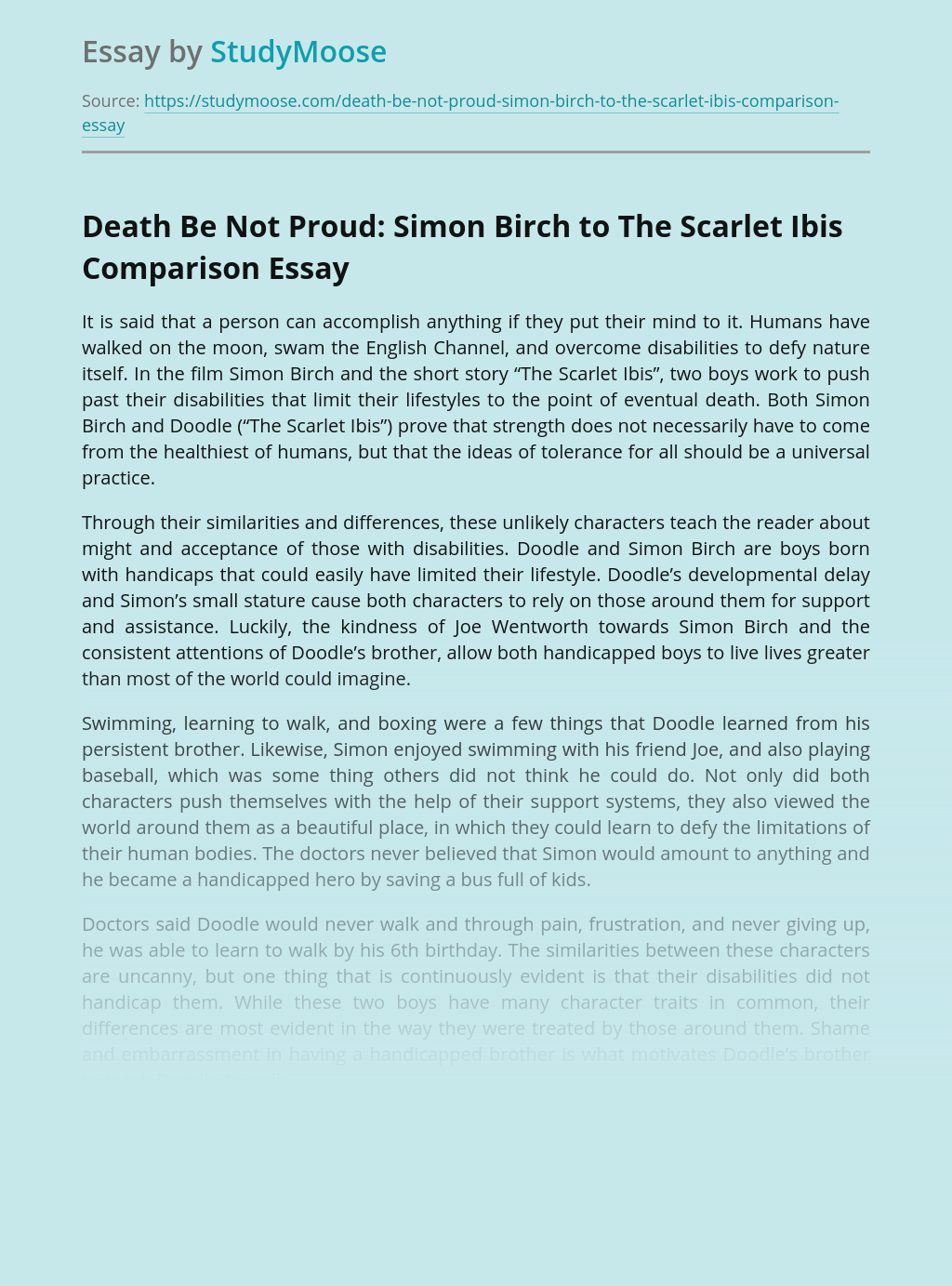 Death Be Not Proud: Simon Birch to The Scarlet Ibis Comparison