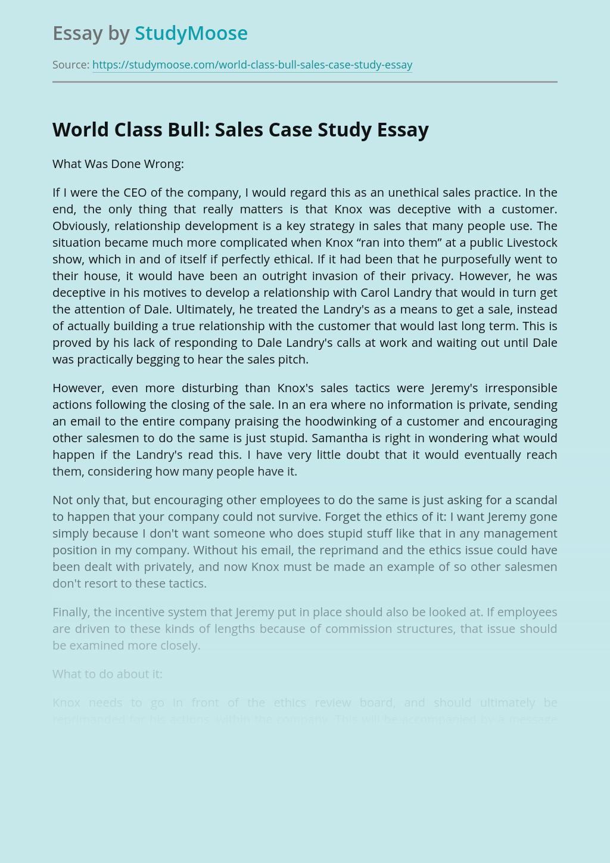 World Class Bull: Sales Case Study
