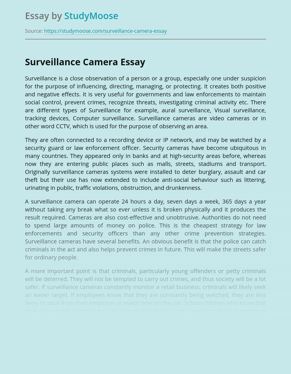 Surveillance privacy essay top article proofreading website for college