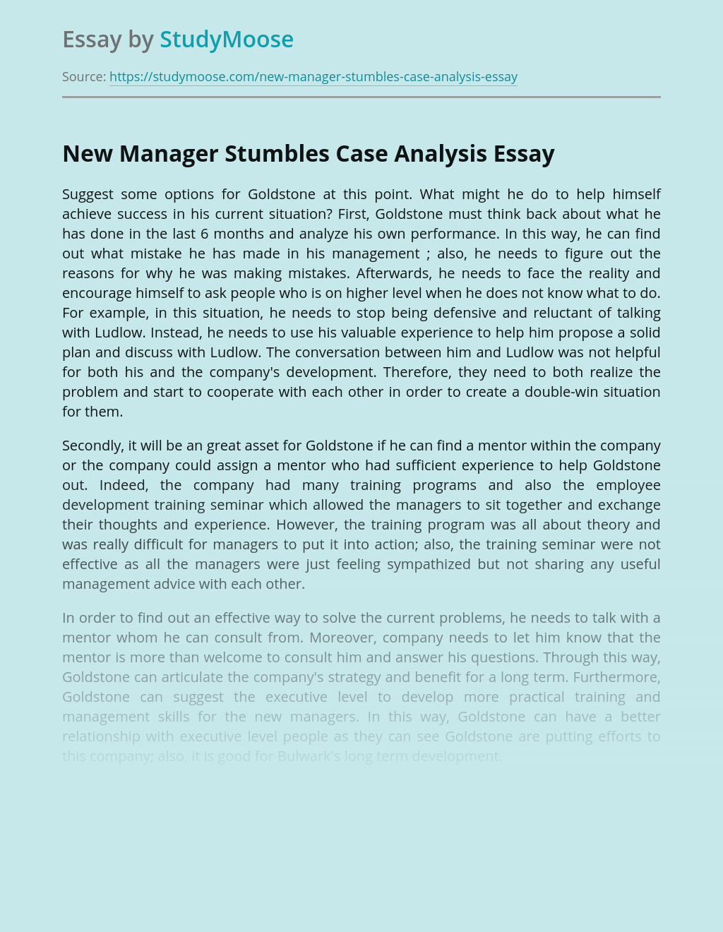 New Manager Stumbles Case Analysis