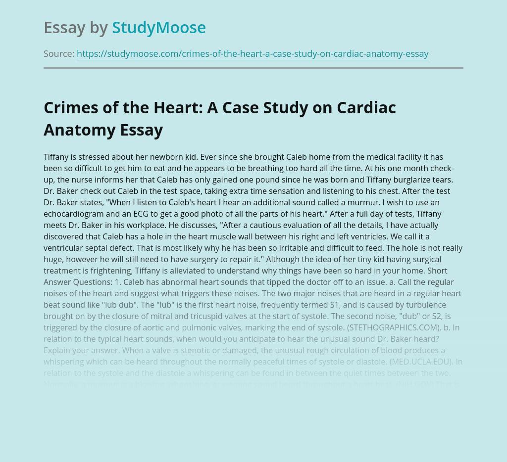 Crimes of the Heart: A Case Study on Cardiac Anatomy