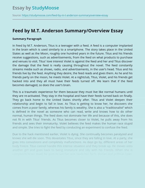 Summary of Characters in Dystopian Societiy of Feed