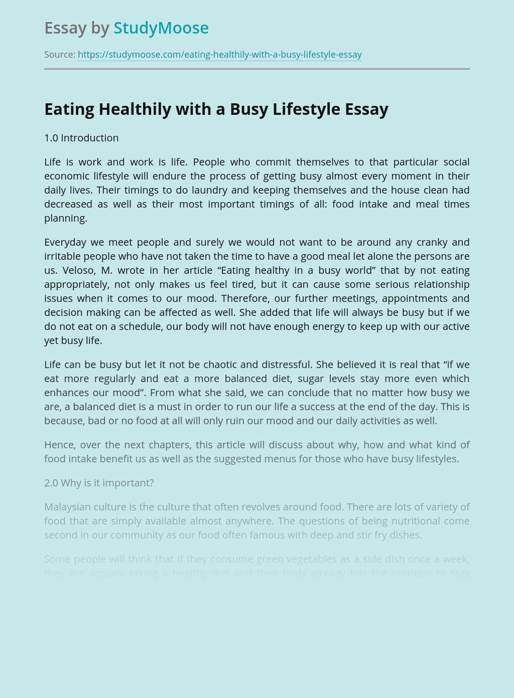Eating Healthily with a Busy Lifestyle