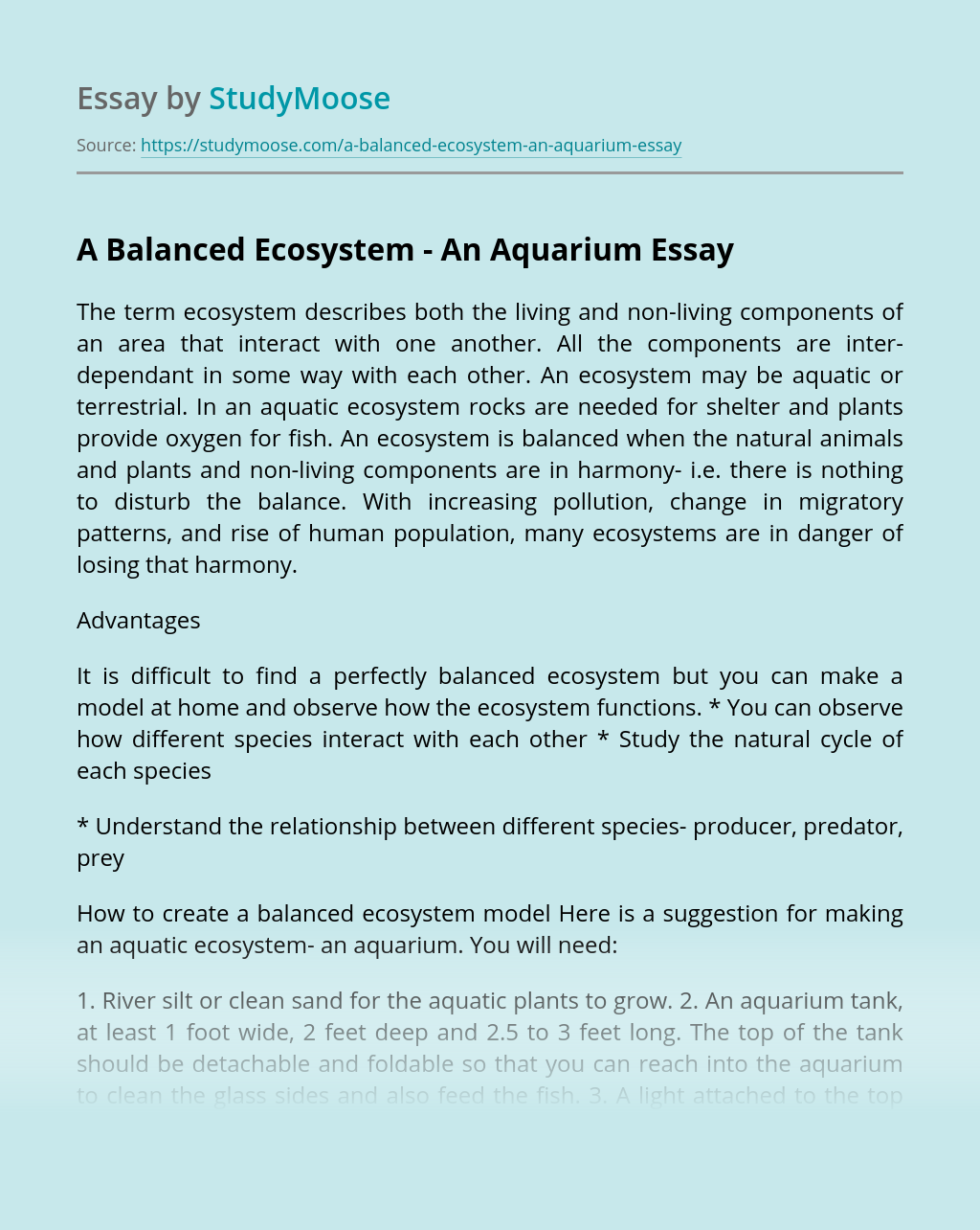 A Balanced Ecosystem - An Aquarium