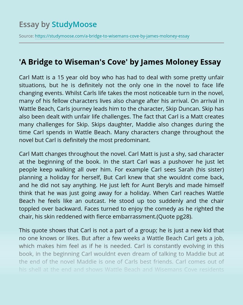 'A Bridge to Wiseman's Cove' by James Moloney