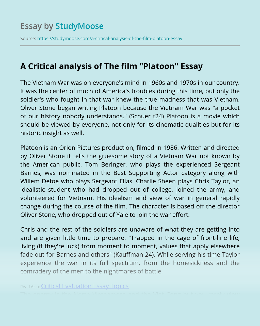 """A Critical analysis of The film """"Platoon"""""""