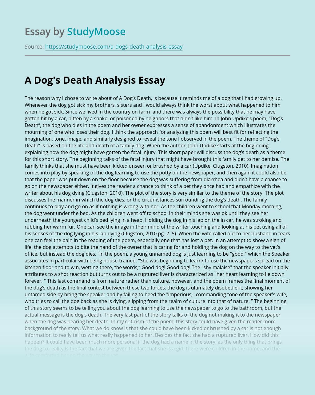 A Dog's Death Analysis