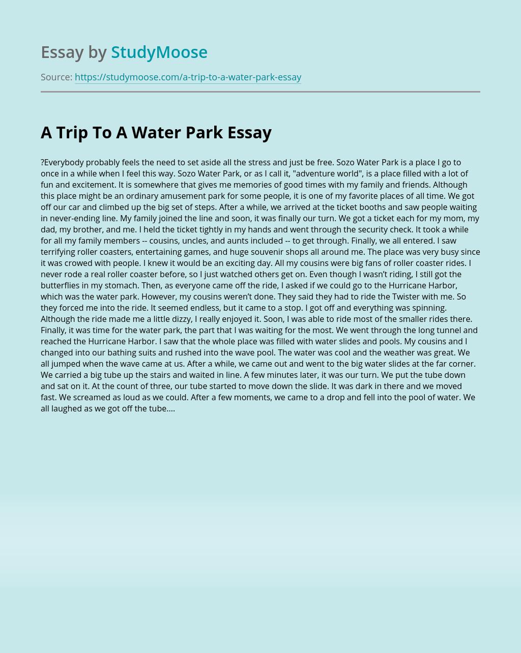 Childhood obesity solutions essay