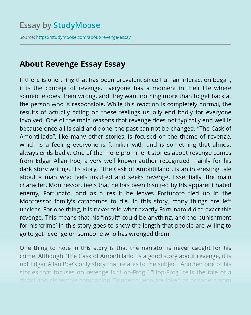 About Revenge Essay