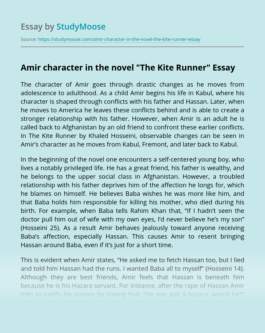 Amir character in the novel